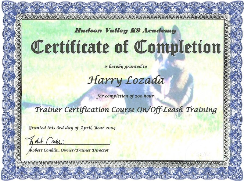 long island dog behavior dog training dog obedience dog nutrition ...