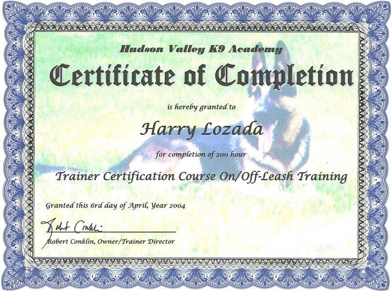 Long Island Dog Behavior Dog Training Dog Obedience Dog Nutrition ...